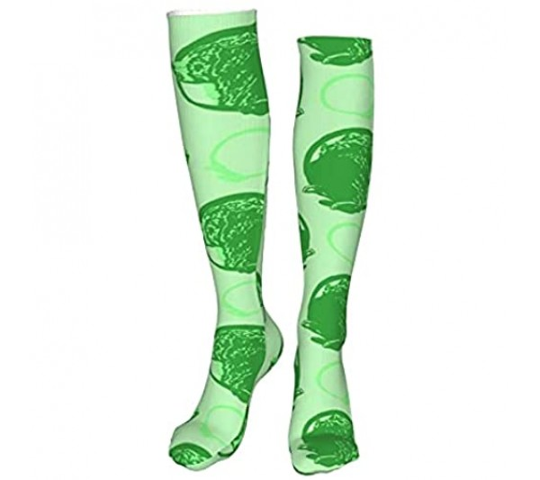 Collared Bernese Mountain Dog Portraits Green Womans Mens Funny Athletic Leggings Knee High Stockings For Dress Sport (60cm)